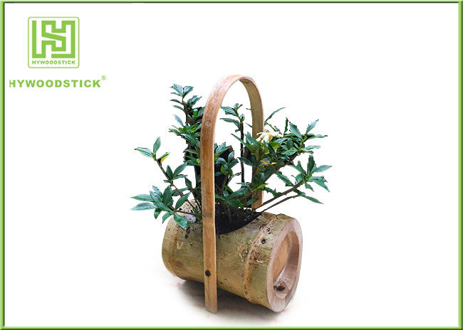 Attractive Indoor Bamboo Flower Pots For Various Succulents Plants